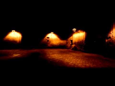 <p> Barcelona Street Musician - Gothic Quarter</p>