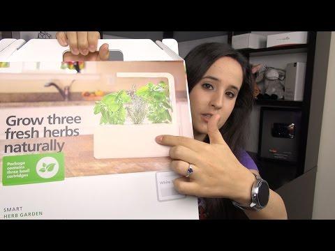 """A """"Smart"""" Herb Garden? Click & Grow Review"""
