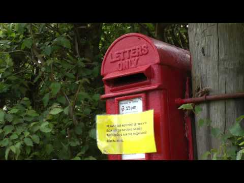Wildlife Gadgetman - Great Tits Nesting In Post Box - May 2014