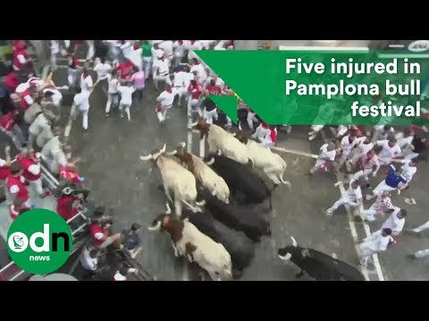 Five injured in Pamplona bull festival