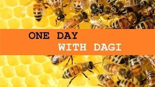 ONE DAY WITH DAGI | Ein Brief an die Bienchenmama [RAYDIO ROENTGEN]