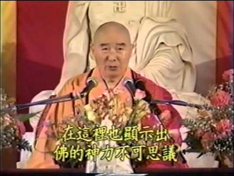 Kinh Vô Lượng Thọ (1994) Tập 9 - PS Tịnh Không