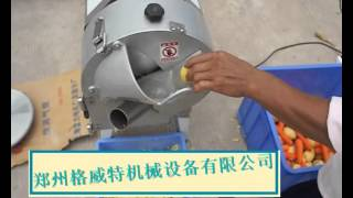 vegetable and fruits   slicing  machine