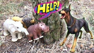 Amazing Fight Wild Animals Toys Vs Crazy Dog - The Intelligent of Wild Animals - Toys Video for Kids