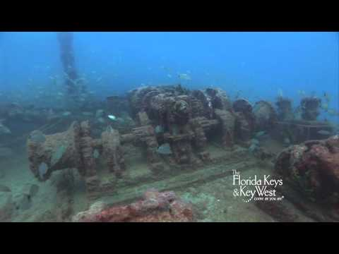 Dive The Florida Keys, Adolphus Bush Shipwreck Big Pine, Key