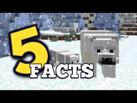 ✔ Minecraft: 5 Facts You Didn't Know About the Polar Bear