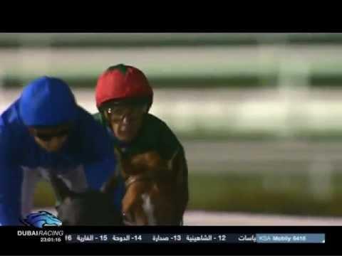 23.02.2012 Meydan (Dubai UAE) 1.Race Swaidan Trading Company - Goodyear - Handicap 1.900 m