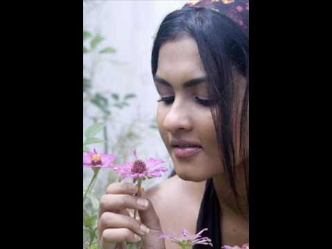 Digu Neth Hasaralle - Edited By Sudhamma video