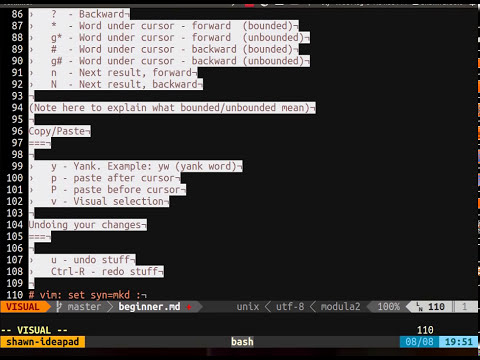 Vim Training Class 2 - Basic motions and commands