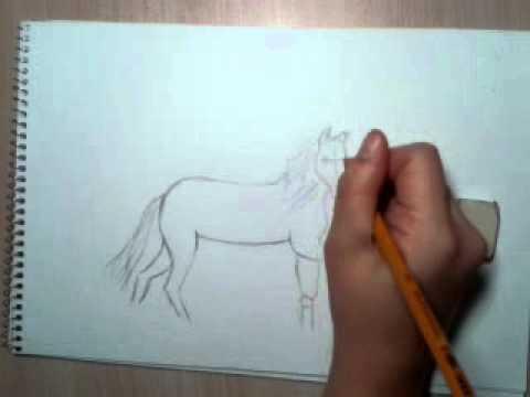 Видео как нарисовать лошадь с санями
