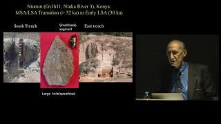 Volcanic Winter, Population Bottlenecks, and Human Evolution
