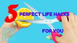 5 Perfect Lifehacks For You !!/ 5 Miniature Crafts