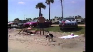 Beagle Is Trained To Take Off Girl's Bikini Tops