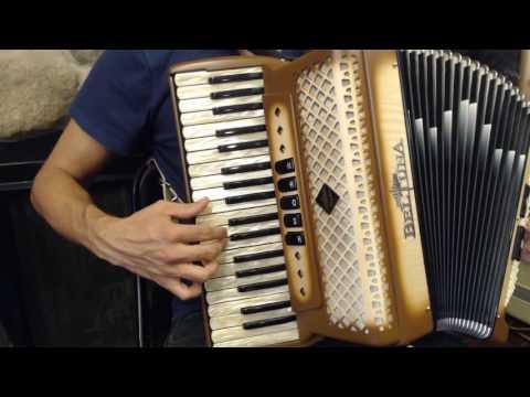 How To Play A 96 Bass Accordion - Lesson 5 - Gypsy Swing In D Minor - Dark Eyes Ochi Chyornye