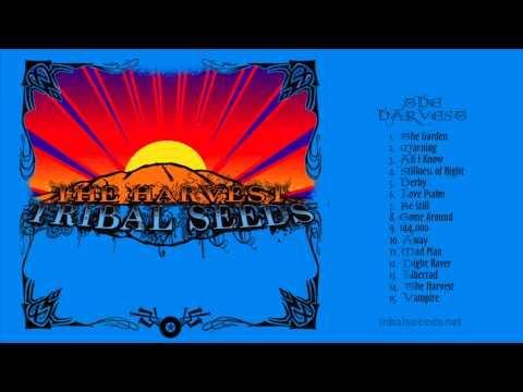 Tribal Seeds Lyrics Warning Tribal Seeds Warning Feat