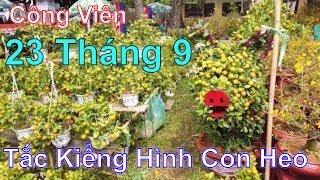 LangThangTv - Tham Quan Chợ Hoa Xuân Công Viên 23 Tháng 9 - Tết Kỷ Hợi 2019