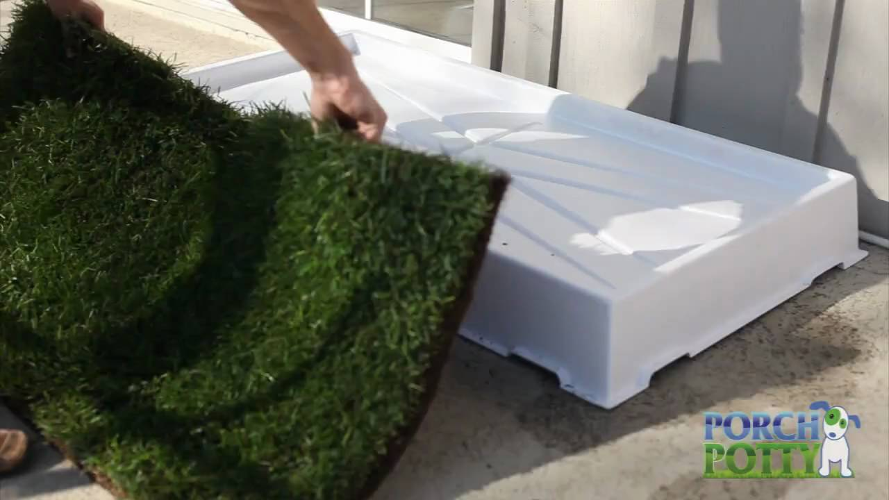 Using Grass with the Porch Potty - Dog Potty - YouTube