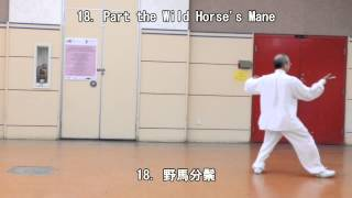 42 Form Tai Chi (Back View) (2013.09.01 )