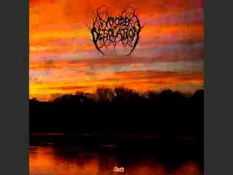 Woods Of Desolation - Enshrouded By Solitude