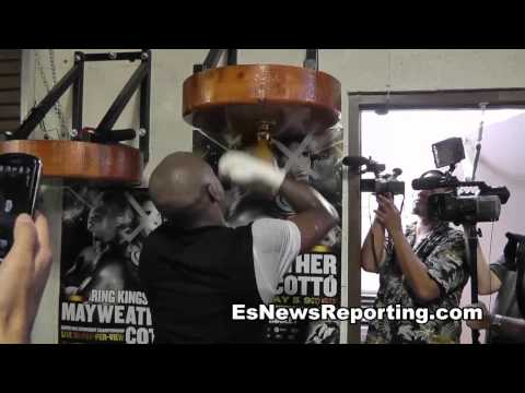 Floyd Mayweather Speed Bag Image 1
