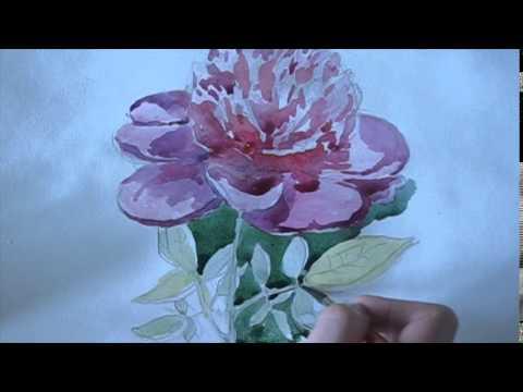 Видео как нарисовать пион