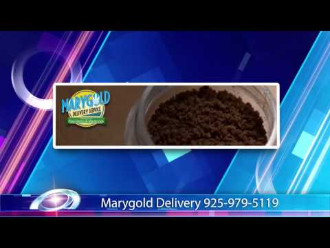 Marygold Delivery Service 925-979-5119