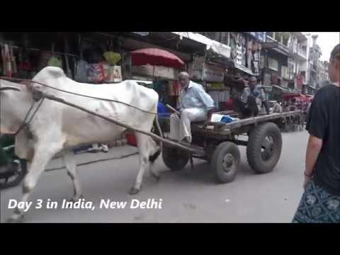 Pahar Gan, New Delhi   Day 3 India Adventure