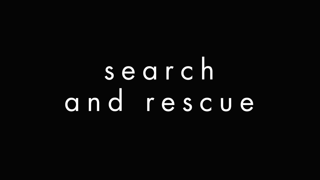 Project 46 - Search and Rescue (feat. HALIENE) [Cover Art]