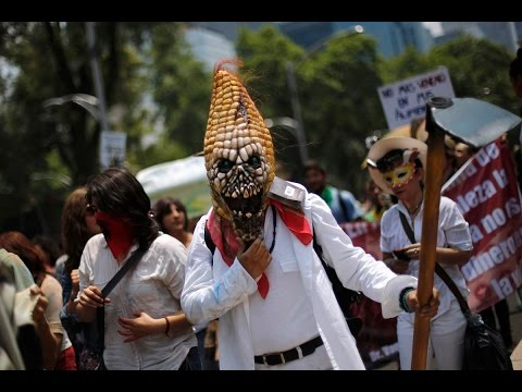 The third annual 'March against Monsanto' protest is taking place in cities around the world. Activists are highlighting the monopoly the GMO giant has in controlling food supply. Protesters say Monsanto controls 90 percent of the seed market in the US.  LIVE UPDATES: http://on.rt.com/337v1t   RT LIVE http://rt.com/on-air  Subscribe to RT! http://www.youtube.com/subscription_center?add_user=RussiaToday  Like us on Facebook http://www.facebook.com/RTnews Follow us on Twitter http://twitter.com/RT_com Follow us on Instagram http://instagram.com/rt Follow us on Google+ http://plus.google.com/+RT Listen to us on Soundcloud: https://soundcloud.com/rttv  RT (Russia Today) is a global news network broadcasting from Moscow and Washington studios. RT is the first news channel to break the 1 billion YouTube views benchmark.