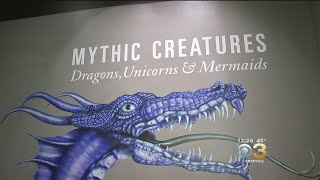 'Mythic Creatures: Dragons, Unicorns And Mermaids' Exhibit Opens At Academy Of Natural Sciences.