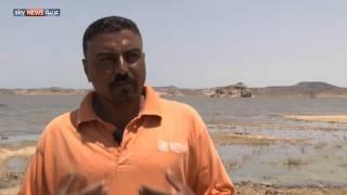 السودان.. وفرة بالسمك ونقص بمعدات الصيد