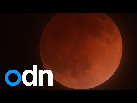 'Blood moon' total lunar eclipse graces pre-dawn skies in USA