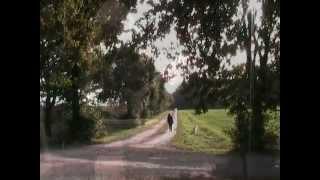Das Laub Fällt Von Den Bäumen - Herbstlied (Ukulele, Gesang)