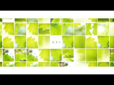 The European Forest Institute (EFI) was established in 1993 in Joensuu, Finland with the aim of enhancing international forest research and providing decisio... Author : European Forest Institute