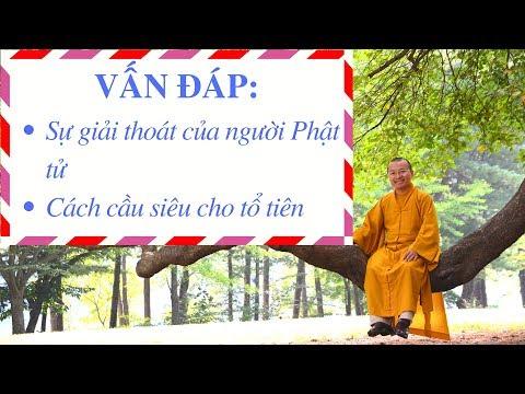 Vấn đáp: Giải thoát của người Phật tử, cầu siêu cho tổ tiên