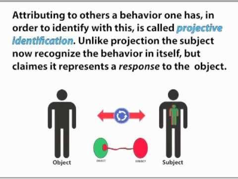 Projective Identificat...