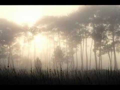 Loreena Mckennitt - Ancient Pines