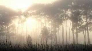 Watch Loreena McKennitt Ancient Pines video