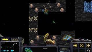 Starcraft Tricks