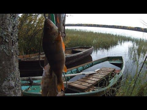 река онда карелия рыбалка