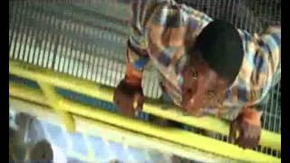 Flight 29 Down (2005) - Official Trailer