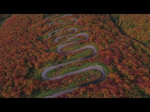 A 69 switchback Japanese downhill longboard race. | Red Bull Side Winders