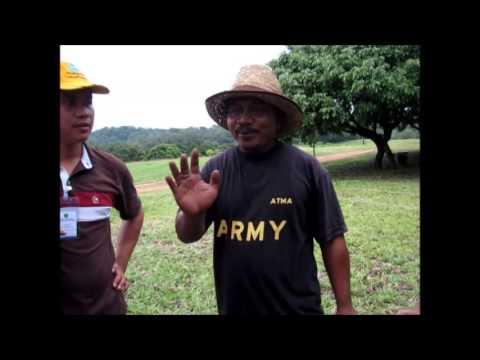 Kursus Lebah Kelulut   Praktikal Penuaian Madu Kelulut