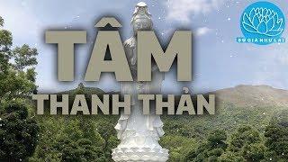 Nhạc Thiền Tịnh Tâm 2019 - Tâm THANH THẢN cho cuộc sống nhẹ nhàng bình an