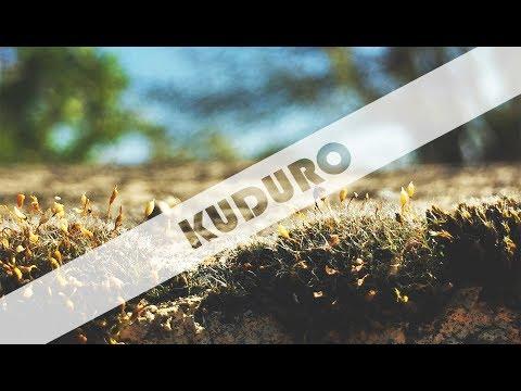 🔴🔵 [Kuduro] - D'Cantwo Junior - Melodia Louca