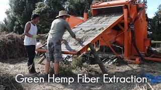 Hemp Farm Green Fiber Processing