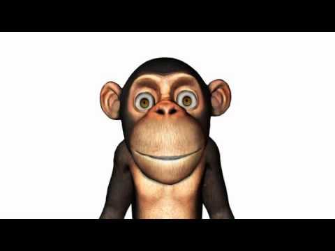La chanson du singe une souris verte youtube - Une souris verte singe ...