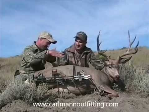 Archery Mule deer hunting in Montana by Carl Mann Outfitting