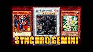 Duel Links - Gemini Synchro!