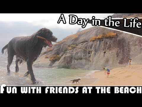 FUN WITH FRIENDS AT THE BEACH IN HUA HIN - LIVING IN THAILAND DAILY VLOG (ADITL EP260)